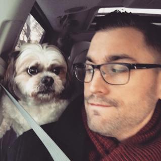 career dogs martin sherlock